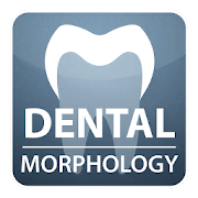 DENTAL MORPHOLOGY for Student